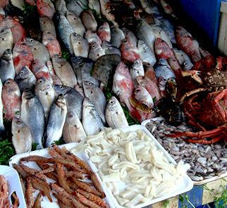 fresh fish essaouira